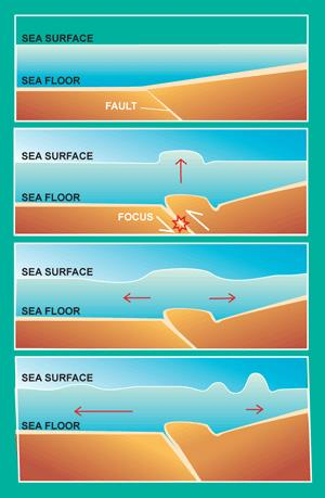 Sea Surface - Sea Floor